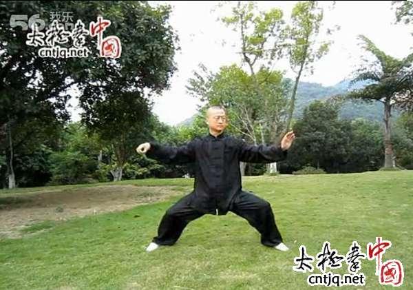 【视频】徐胜演练陈式太极拳