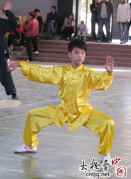 河南省陈氏太极拳协会成立五周年庆赛场掠影(二)
