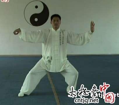 陈志强:单鞭的基本用法