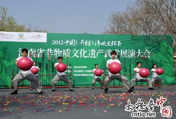 河南省非物质文化遗产武术展演大会拳种展示