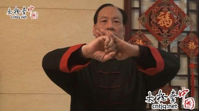 太极拳大师张志俊新春拜年