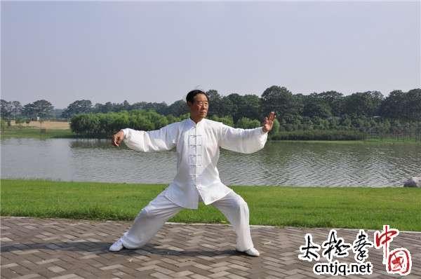 太极大师王西安拳照欣赏