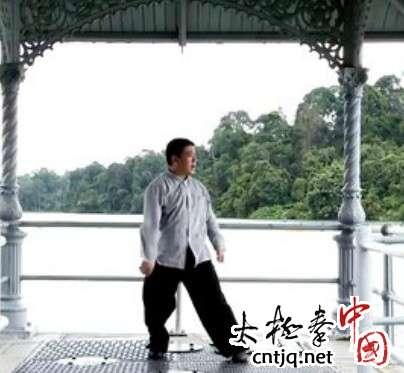 杨式太极拳循环八势 - 第3势 单鞭