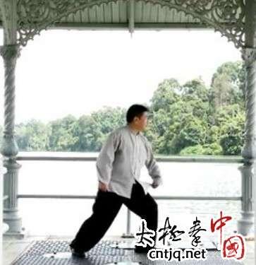 杨式太极拳循环八势 - 第4势 提手上势