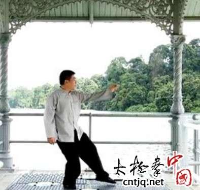 杨式太极拳循环八势 - 第5势 白鹤亮翅