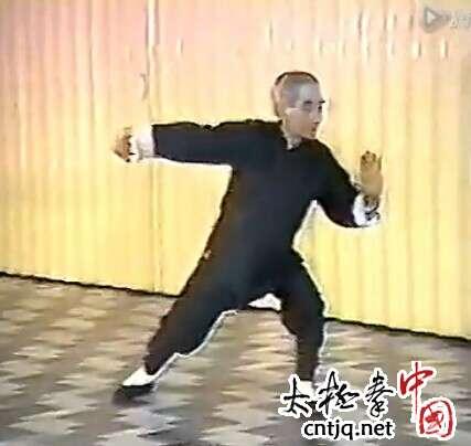 南怀瑾老师示范:杨氏太极拳