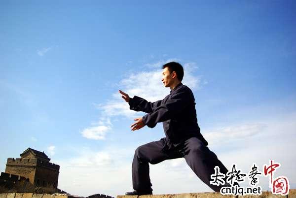 陈庆源:陈式老架二路、推手欣赏