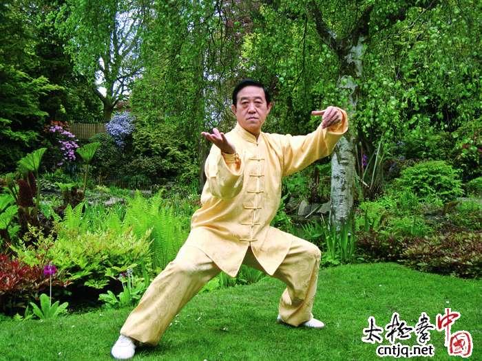 太极拳公开课陈正雷大师八月开讲