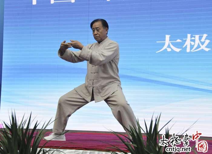 【视频】陈家沟太极文化旅游季朱天才大师精彩太极拳表演