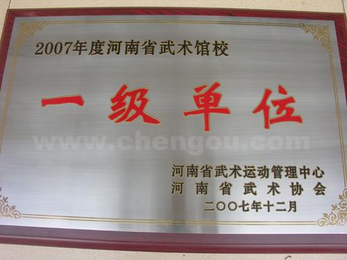"""温县唯一连续5年获""""一级""""馆校"""
