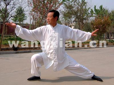 国际太极拳大师王西安先生将赴港讲学