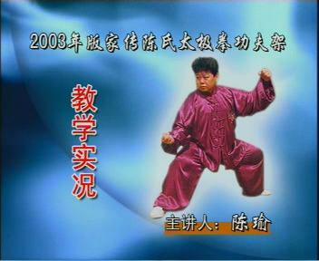 陈照奎拳法研究会函授教材(二路教学光盘)