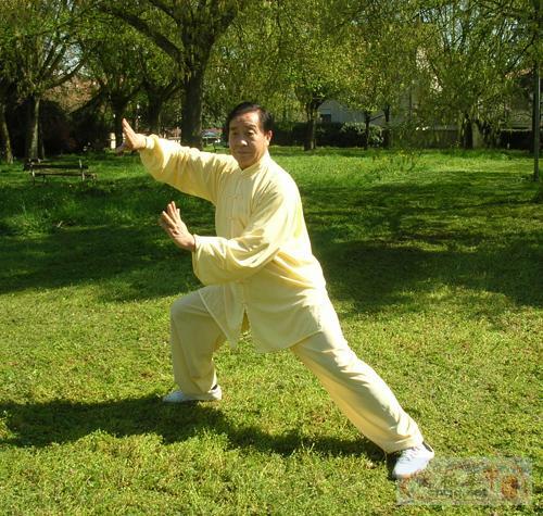 朱天才大师传统太极拳培训班