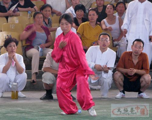 第二届和式太极拳交流大会裁判拳姿