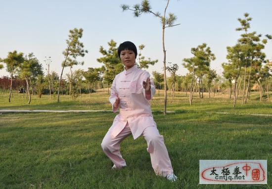 中国太极拳优秀人才-蚁金瑶