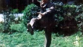 1984年武汉国际太极拳交流大会名家