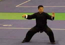 温县太极健儿在全国太极拳公开赛上大获全胜,喜获14金