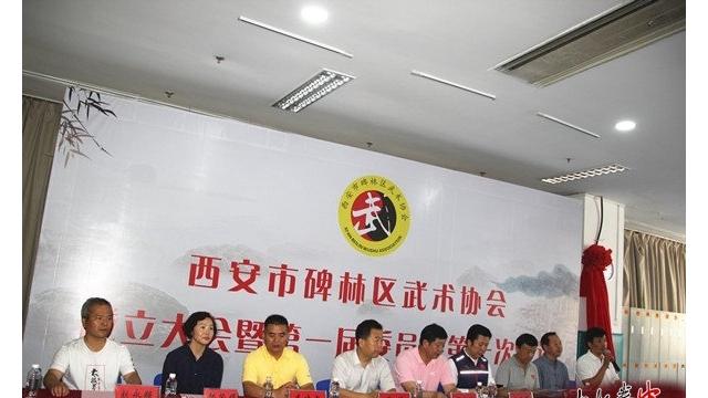 西安市碑林区武术协会成立 陈西立当选首届武协主席
